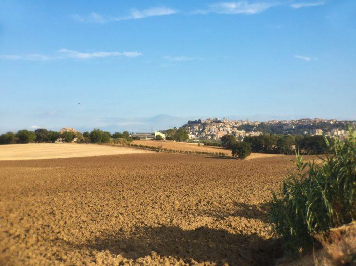 OSIMO -…cosa mi porto via